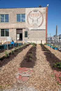 Industrial Urban Farm